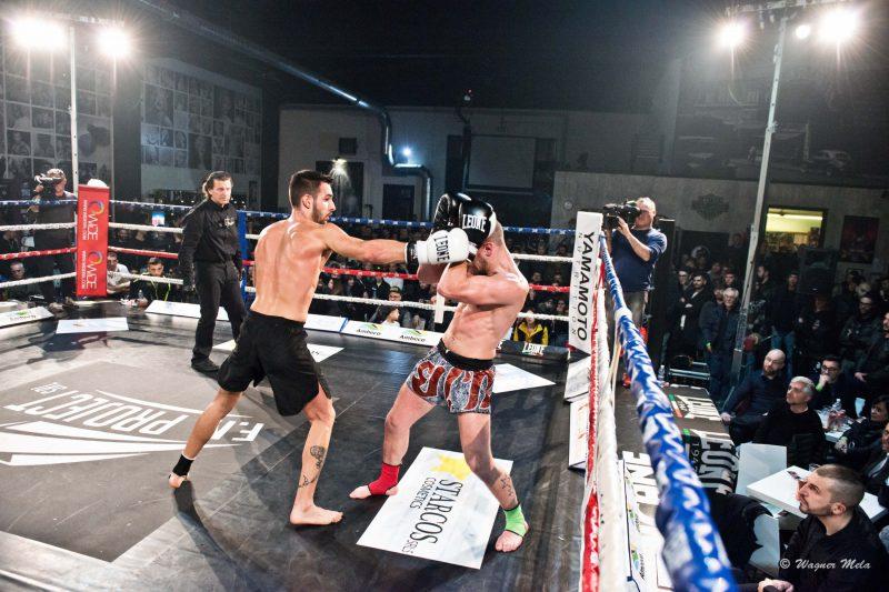 Petrosyan Mania 3, Professionisti